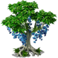 Res blue orchid 1.png