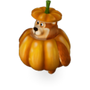 Pumpkin bear deco