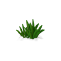 Res curative watergrass 2.png