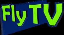 Ftv2008