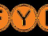 F.Y.E. (El Kadsre)
