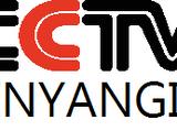 CCTV YinYangia