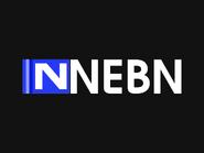 NEBN 2003 Dolphin Pro style ID