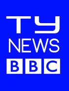 Topitoomay News BBC Logo