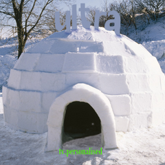 Igloo ident, 2004. It was first seen in Greenland.