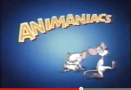 Toon Disney Toons Well Be Right Back Animaniacs Bumper 2 2002