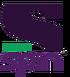 Sony Spin logo
