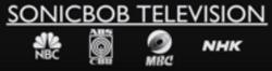 Sonicbob logo 1993