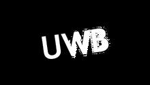 UWB 1999