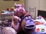 Utn screenbug - nighttime tv during lifes a zoo (2014)