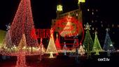 CER2 Christmas ID