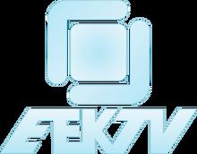 EEKTV3