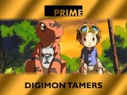 PRIMEAN 2003 SLIDE (DIGIONTAMERS)