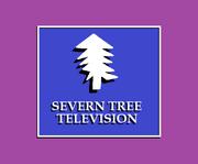 Severn Tree 1984