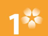 SVT1 (USA)