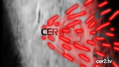 CER2 ID 46 (2014)