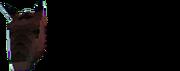 Bay company logo