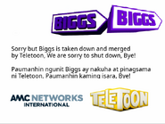 Biggs Stevia final message