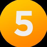 5 Network 2013 logo