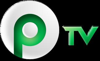 PTV Lechutan Logo 2006