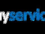 Guy Service