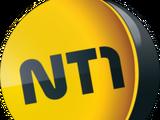 NT1 (Momoland Islandia)