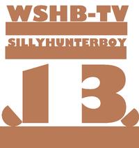 Wshb-tv 13 logo 1980