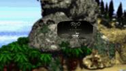 RKO (Donkey Kong Country, 2004)
