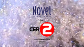 CER2 2014 copyright notice