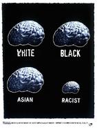 Racialequalityek1996