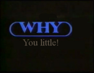 WHHY-TV spoof (Surreal Vision)