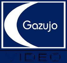 Gazujo Video 1982
