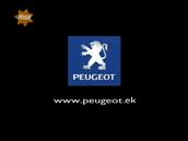 Peugeot EK TVC 2004