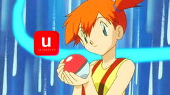 Ultra Pokeball Ident 2012