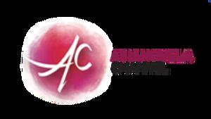 Asianovela Channel EK 2017