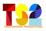 TheSponge231 logo 2017 2