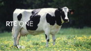 Rte one 2004 id spoof from thha22m - cow