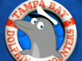 Tampa Bay Sex-Free Dolphin Encounters