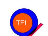 TF1 (Blone Island)