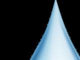 WaterTV