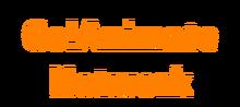 GO!N New logo