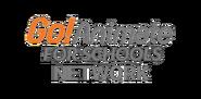 Go!Animate for Schools Network logo (1987-1989)