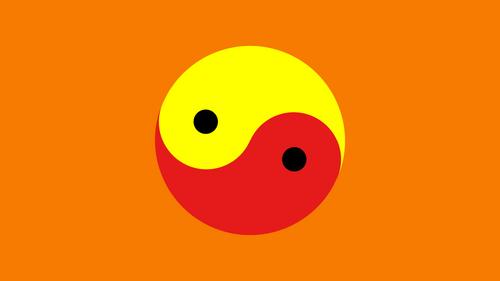 Flag YinYangia