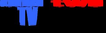 El TV Kadsre Television Network Logo 1979