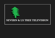 Severn & LX Tree 1985