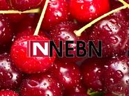 NEBN 2003 Cherry ID