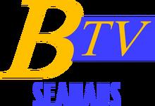 BTVS95