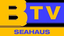 BTVS96