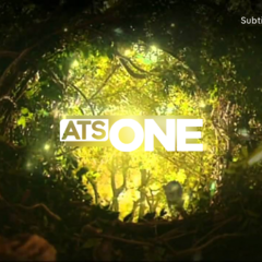 Forest ident (2017-present)