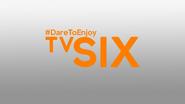 TVSIX Alexonia 2017 ID